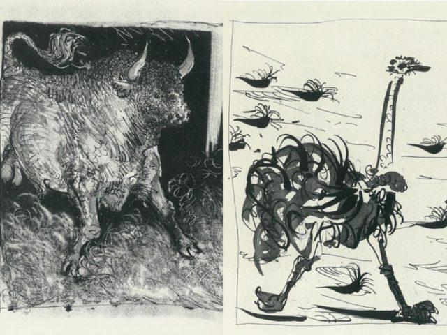 La Shoah dell'Arte, il Maca aderisce con 4 opere di Picasso News