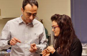 Caterina Lamuta conquista gli Stati Uniti con i suoi studi sull'applicazione della fibra di carbonio al campo dei materiali intelligenti