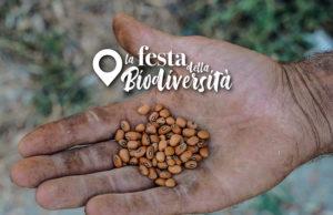 Festa della biodiversità - Kepos il giardino delle meraviglie